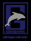 logo-gumusdoga